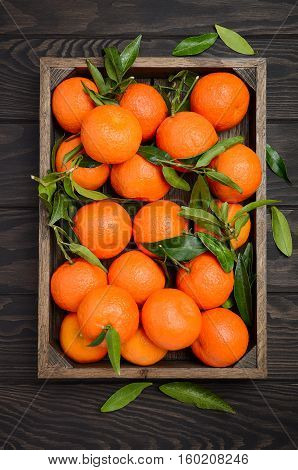 Fresh tangerine clementines with leaves in wooden tray on dark wooden background, top view, vertical.