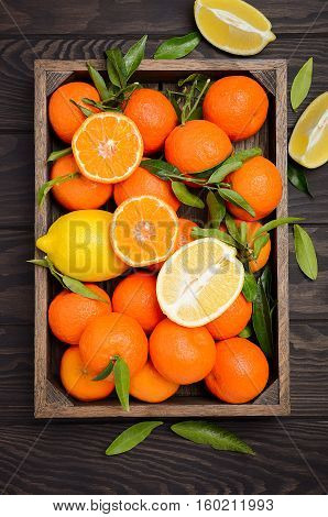 Fresh tangerine clementine  and lemons with leaves in wooden tray on dark wooden background, top view, vertical.