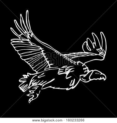 Hand-drawn pencil graphics, african vulture, hawk. Engraving, stencil style. Black and white logo, sign, emblem, symbol. Stamp, seal. Simple illustration. Sketch.