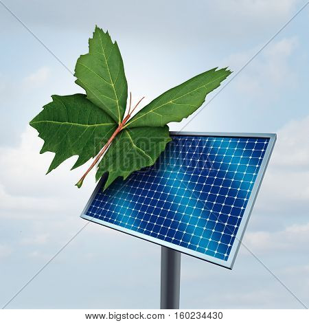 Solar power concept and renewable clean sunlight energy symbol as a green leaf shaped as a butterfly resting on a solar cell pnel as a metaphor for environmental and ecological friendly sustainable fuel source with 3D illustration elements.