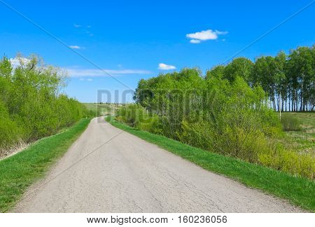 The road turns summer day sunny weather around trees and hills