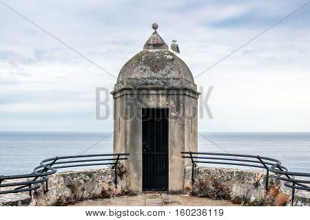 seagull standing on watch tower at coast