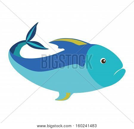 colorful silhouette with sea fish blue vector illustration