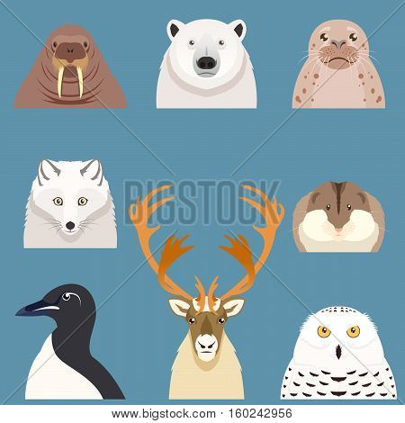 Vector image of the Set of flat arctic animal icons
