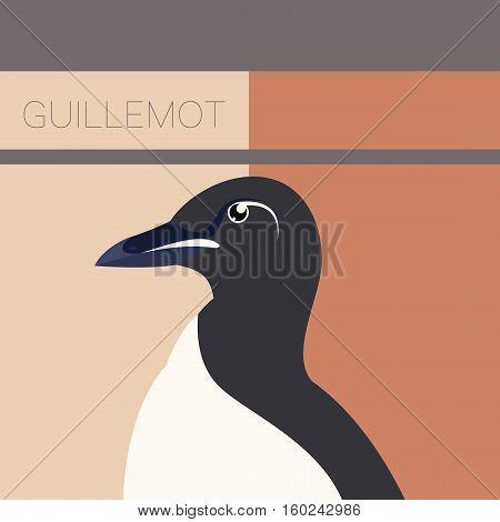 Vector image of the Guillemot flat postcard
