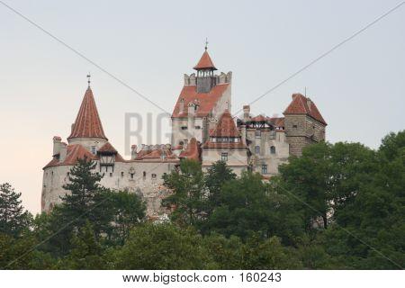 castle - dracula's castle poster