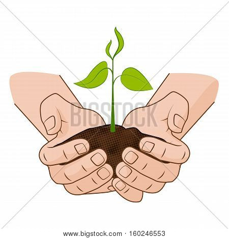 Growing plant in handful soil in hands. Comic style grow business concept vector illustration web infographics.