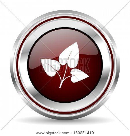 leaf icon chrome border round web button silver metallic pushbutton
