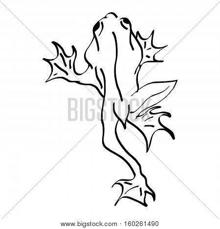 illustration vector doodles hand drawn frog climbing wall background