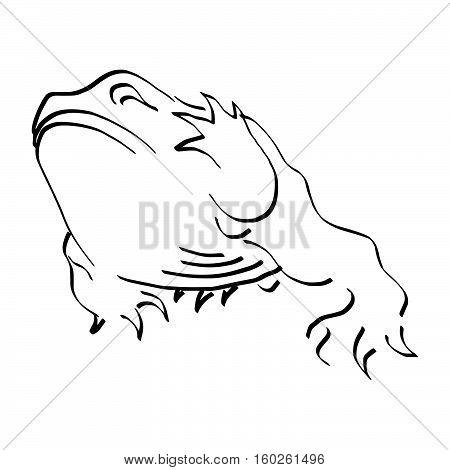 illustration vector doodles hand drawn frog raising its hand isolated