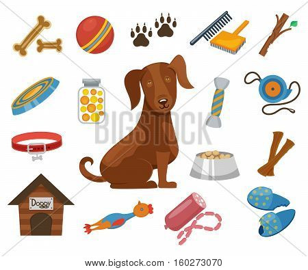 Pet dog vector icons. Collar and bowl for dog, illustration dogs kennel