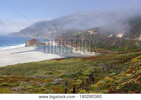 Little Sur River with Fog at Springtime. Big Sur, California, USA.