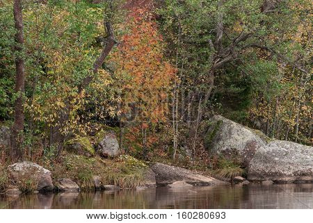 Natural autumn landscape in a quiet bay of Lake