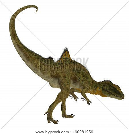 Concavenator Dinosaur Tail 3D Illustration - Concavenator was a carnivorous theropod dinosaur that lived in Spain in the Cretaceous Period.