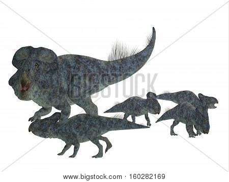Protoceratops Mother with Offspring 3D Illustration - Protoceratops was a herbivorous Ceratopsian dinosaur that lived in Mongolia in the Cretaceous Period.