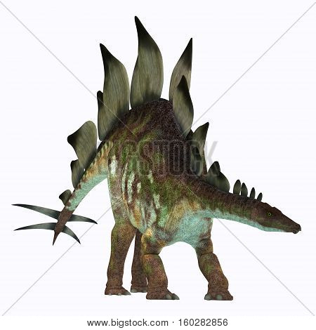 Stegosaurus Dinosaur on White 3D Illustration - Stegosaurus was an armored herbivorous dinosaur that lived in North America during the Jurassic Period.