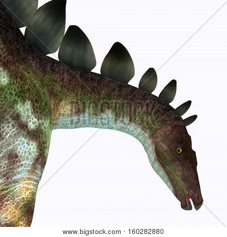 Stegosaurus Dinosaur Head 3D Illustration - Stegosaurus was an armored herbivorous dinosaur that lived in North America during the Jurassic Period.