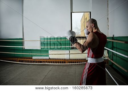 portrait of male boxer standing in the ring prepared for fight