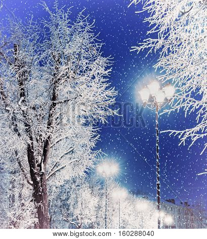 Winter landscape night view with shining lantern among the winter frosty trees and winter falling snow. Winter landscape scene of colorful city winter night with Christmas and New Year mood - snowy winter background