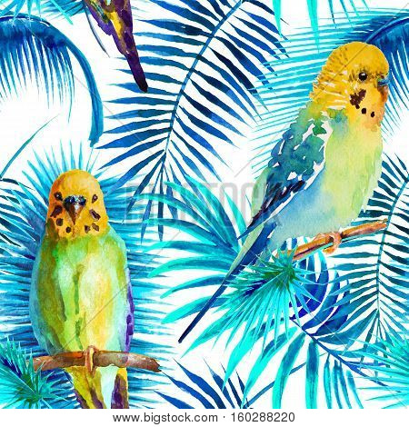 watercolor picture of budgie on a white background. Seamless pattern