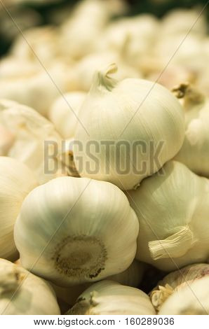 Background of garlic on the supermarket shelf. Close up. Fresh organic on shelf in supermarket. Healthy food concept. Vitamins..