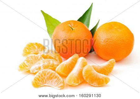 slice of mandarin tangerine slice tasty tangerine tasty slice of mandarin juicy slice of mandarin juicy mandarin tangerine bright bright tangerine slice fruitsweet fruit beautiful mandarin