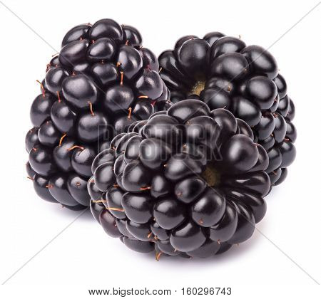 Group of three ripe blackberries isolated on white background with clipping path