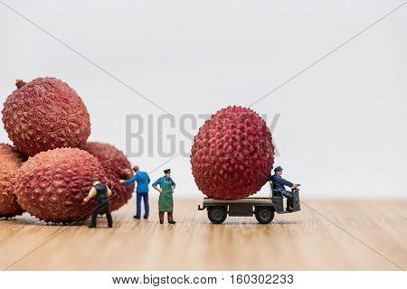 Lychees on truck. Delivery concept. Macro photo
