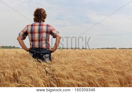 horizontal image of a caucasian lady In checkered shirt and denims standing in a golden wheat field with her back turned to camera in the early autumn.