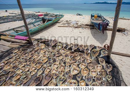 Traditional salted fish drying on racks in Semporna,Sabah,Borneo.Bajau Laut or Sea Gypsy sell their surplus catch as dried and salted fish through nearest town in Semporna,Sabah.