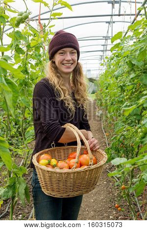 Smiling Blonde Woman Holds Wooden Basket Of Organic Tomatoes