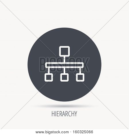 Hierarchy icon. Organization chart sign. Database symbol. Round web button with flat icon. Vector