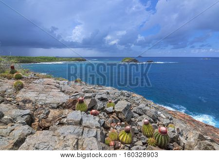 Melon cactus growing on rocky bluff of Punta de Molinos on Isla Culebra overlooking deep blue Caribbean Sea and small islands under stormy sky