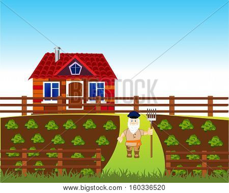 The Area with vegetable garden and house.Vector illustration