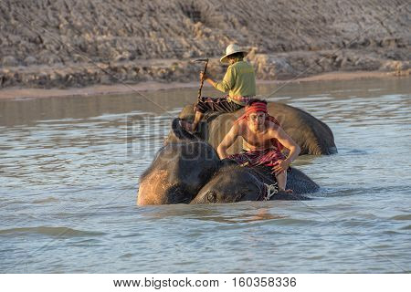 mahouts ride a elephants and prepare to take a bath elephants in river.
