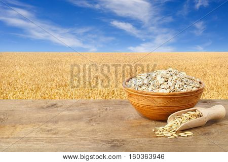 Oat flakes in bowl. Grains of oat in scoop and oatmeal in bowl on wooden table with field on the background. Golden field and blue sky. Uncooked porridge