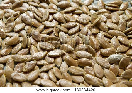 unpeeled pumpkin seeds in the film background