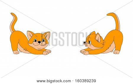 cats red animals played painted tailings small yellow