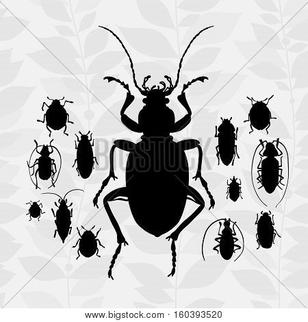 Contrast Vector Set With Silhouette Of Bugs.