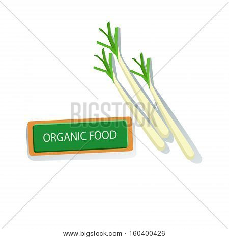 Three Plants Of Shallot Fresh Organic Vegetables Illustration With Farm Grown Eco Products. Vegetarian Bio Food And Healthy Diet Element Cartoon Vector Drawing.