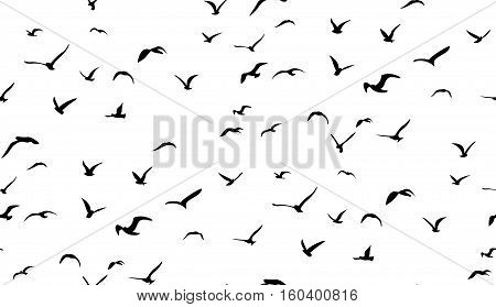 Seagulls flying in the sky seamless vector pattern.