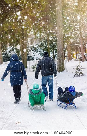 Family sledding season husband and wife are pulling two sledges with their children outdoors in winter park snowfall