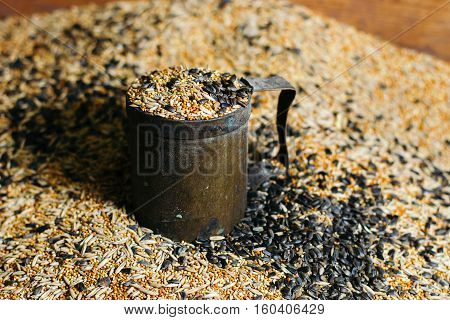 Birdseed grain poured in a vintage mug. Seeds, Grains, Pet Foods, Grains