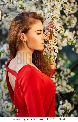 Young Beautiful Woman In Red Dress Enjoying Smell Of Blooming Tree On A Sunny Day