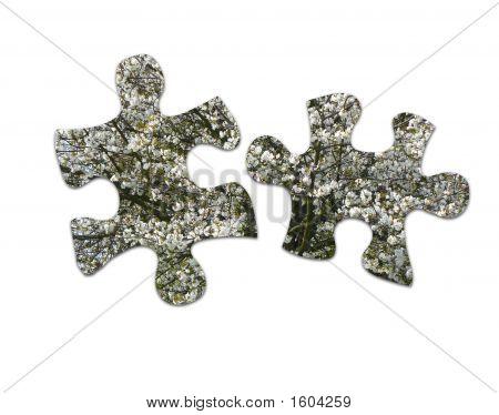 Blossom Jigsaw