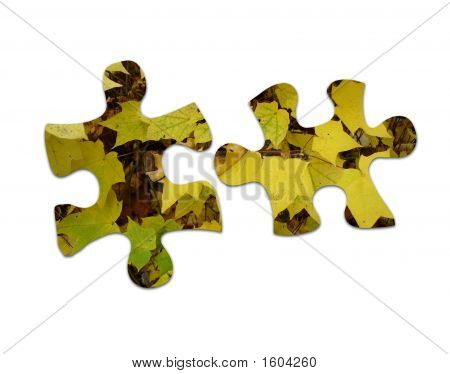 Leaf Jigsaw