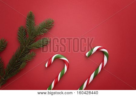 Christmas background with fir twings and candy canes on red. Top view, flat lay. Copy space for text. Winter holidays concept