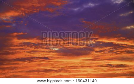 Colorful Purple Sunset