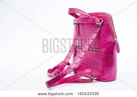 backpack crocodile skin with pink color isolated on white background