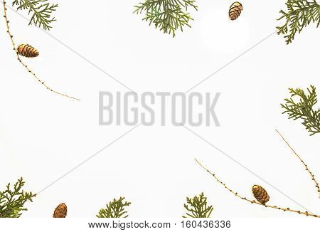 Christmas composition on white background. Green thuja twigs, pine cones aarranged as Xmas wreath. Top view, flat lay. Winter holidays concept